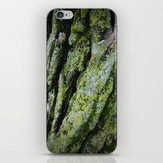 moss, bark iPhone & iPod Skin