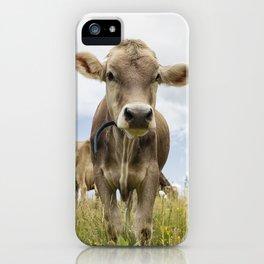 Brown Swiss Heifer iPhone Case