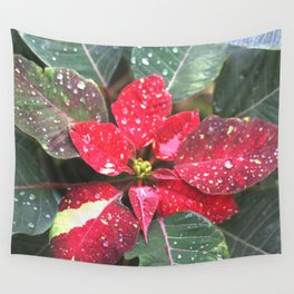 Raindrops on a poinsettia Christmas flower Wall Tapestry