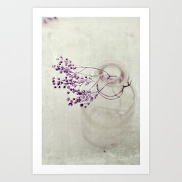 winter still life Art Print