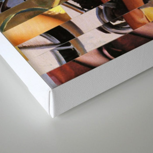 Glitch Pin-Up Redux: Zelda & Zoe Canvas Print