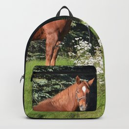 Miss Sadie - A horse, of course Backpack