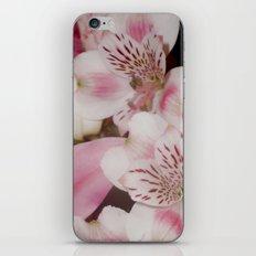 3  iPhone & iPod Skin