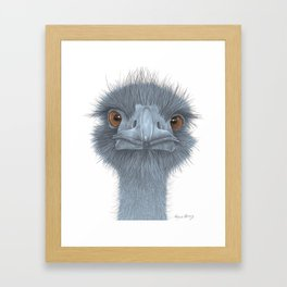 The Blue Emu Framed Art Print
