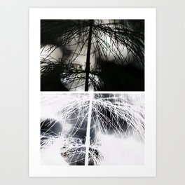 Nature Collage Art Print