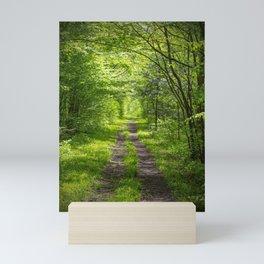 Trail Through Green Woods Mini Art Print