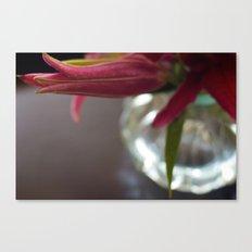 Lily Bit Canvas Print