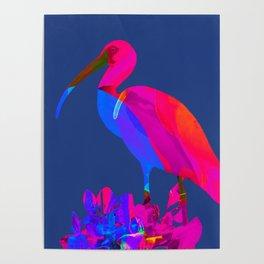 Blue Ibis Poster