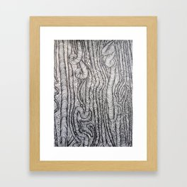 illusions Framed Art Print