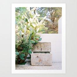 Ibiza Finca - Ibiza - Travel photography Art Print