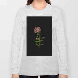 Phlox Undulata Mary Delany Vintage British Floral Flower Paper Collage Black Background Long Sleeve T-shirt