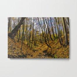 The Golden Fall Metal Print
