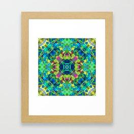 kaleidoscope Crystal Abstract G116 Framed Art Print