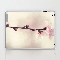 pink blossoms Laptop & iPad Skin