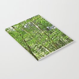 Birches Notebook