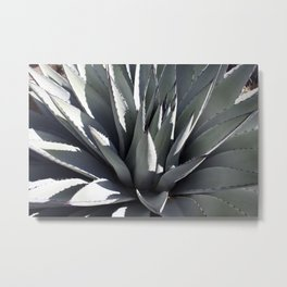 Agave Heart Metal Print