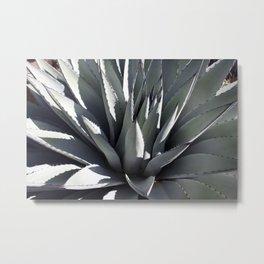 Agave Heart Metal Print