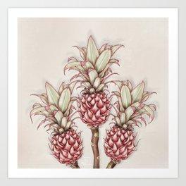 Pink pineapple.Pink exotic flowers Art Print