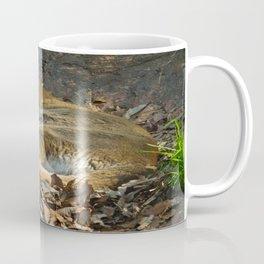 Sleeping Mountain Lion Coffee Mug