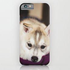 husky puppy. iPhone 6s Slim Case