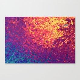 Arboreal Vessels - Aorta Canvas Print