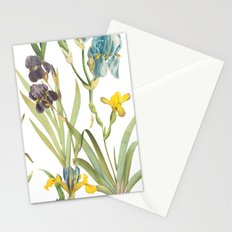 Vintage Floral Pattern | No. 2B | Iris Flowers | Irises Stationery Cards