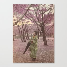 Geisha among Cherry Blossom trees Canvas Print