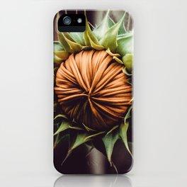 Sunflower Bud Photograph iPhone Case