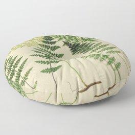 Botanical Ferns Floor Pillow
