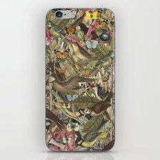 Tsatina II iPhone & iPod Skin