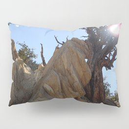 Tree leaning on rock Pillow Sham