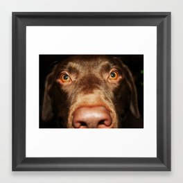 Arf Framed Art Print