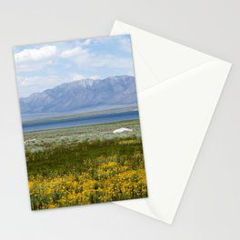 From Flowers to Mountains (Mono Lake, California) Stationery Cards