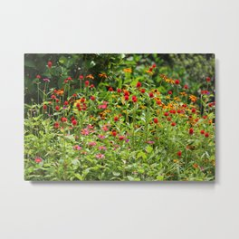 Summer Blossoms Metal Print