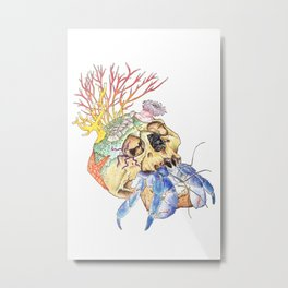 Home I: Hermit Crab Metal Print