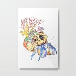 Home I: Hermit Crab Metal Print