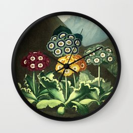 Group of Auriculas :  Temple of Flora Wall Clock