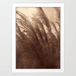 Leaves of Grass_brown vintage style Van Dyke print Art Print
