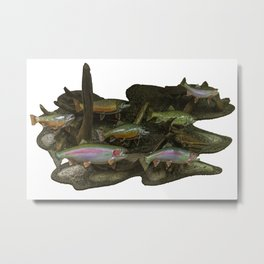 Trout Fishing Gifts Metal Print