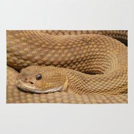 Brown Rattlesnake  Rug
