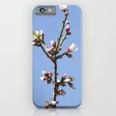 Blossom Branch iPhone 6 Slim Case