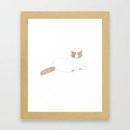 Ragdoll Cat Framed Art Print