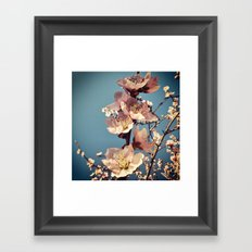 fulgor Framed Art Print