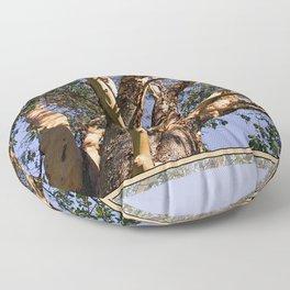 GREAT MADRONA TREE LOOKING SKYWARD Floor Pillow