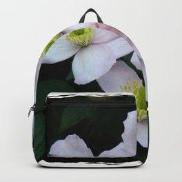 Clemantis Montana I1 Backpack