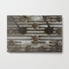 Nuts and Fins Metal Print
