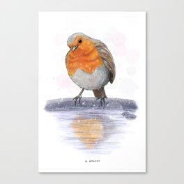 Christmas Robin Canvas Print