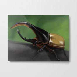 Hercules Beetle (Dynastes hercules) Metal Print