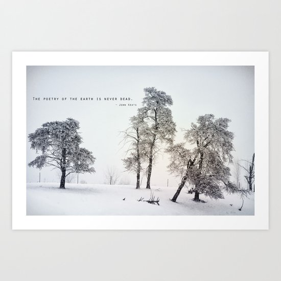 The Poetry of The Earth Art Print