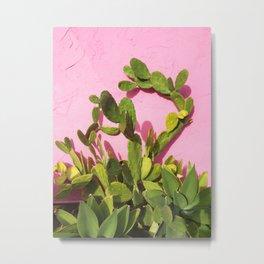 Pink Wall/Green Cactus  Metal Print